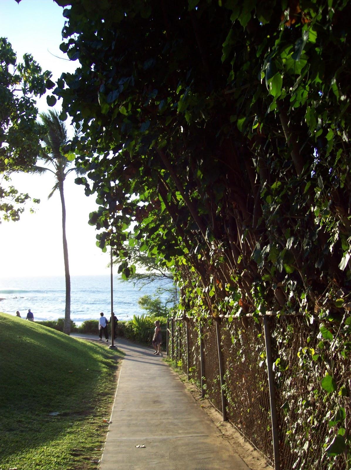 Hawaii Day 6 - 100_7735.JPG