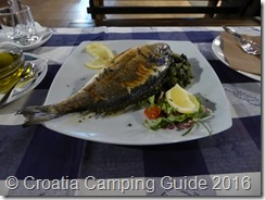 Croatia Camping Guide - Camp Strasko Sea bream
