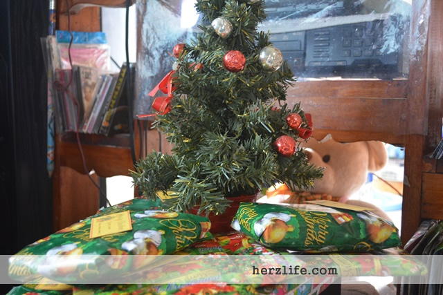 The Small Christmas Tree and Unplanned Preparation