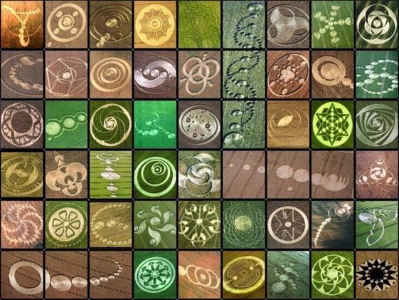 crop circules (5)