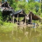 Los astilleros del manglar