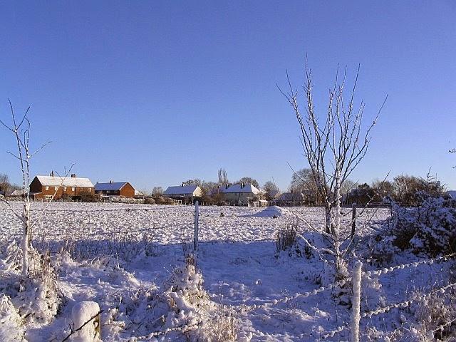 Woodhurst In The Snow - 8743498510233_0_BG.jpg