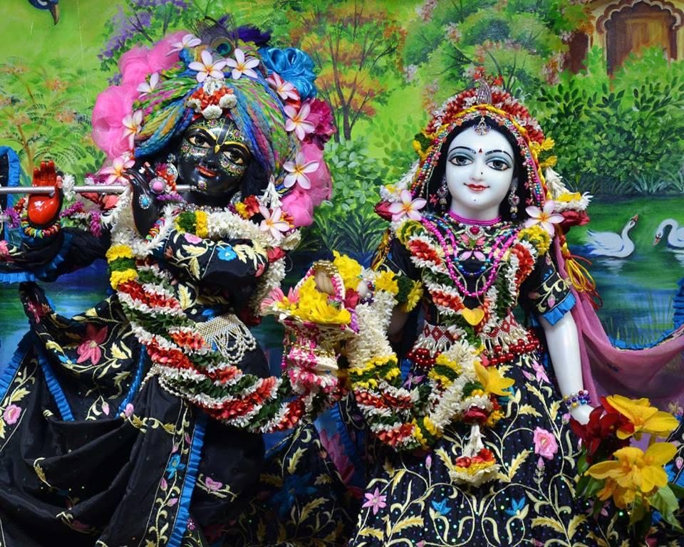 ISKCON Nasik Deity Darshan 03 Feb 2016 (1)