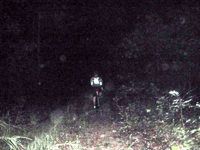 Night Biking at Berryman Adventure