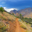 cannell_trail_IMG_1936.jpg
