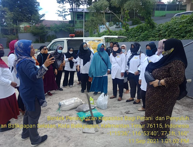 Komisi IV DPR RI Gandeng Kementan Tingkatkan Skill Petani dan Penyuluh Kelola Pekarangan Pangan Lestari di Balikpapan