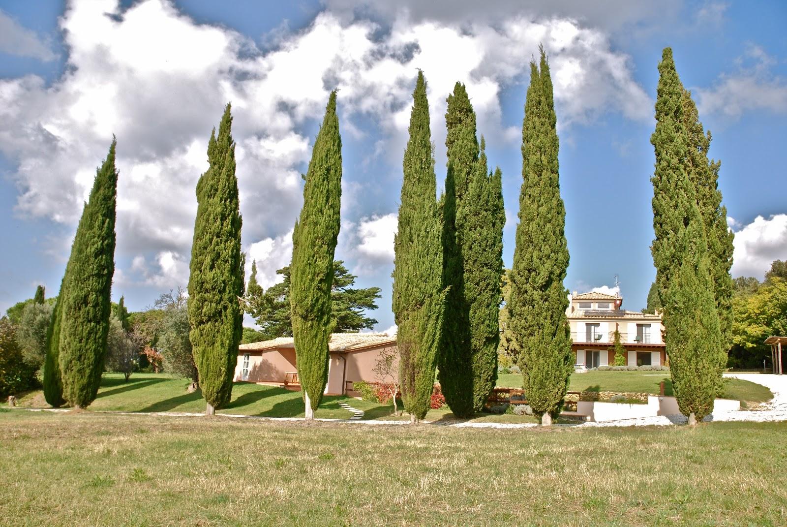 Villa Bolgheri_Bibbona_1