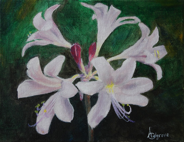 Fairy Lilies - Original Painting