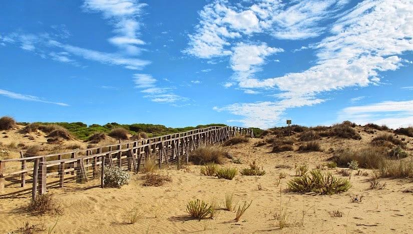 Una de las pasarelas que conduce a la Playa de Los Enebrales