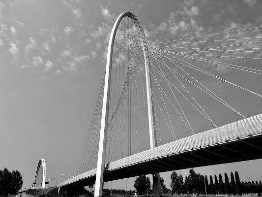 Calatrava's Bridges di annabus58