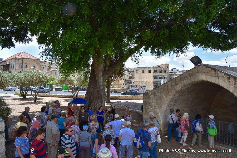 Экскурсия в Назарете возле старинной водокачки - сабиль. Гид Светлана Фиалкова.