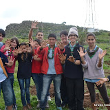 Reforestación Scouts y Rovers enero 2013