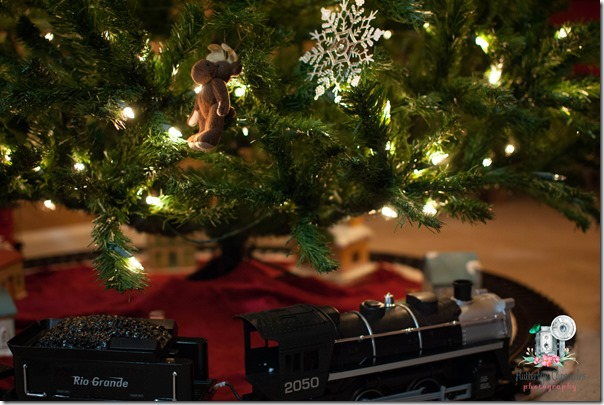 Christmas Tree & Train (©Jenny @ Flutterbye Chronicles)