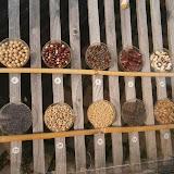 Гербарий из семян обычных продуктовых культур