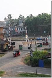 Ланка (253)