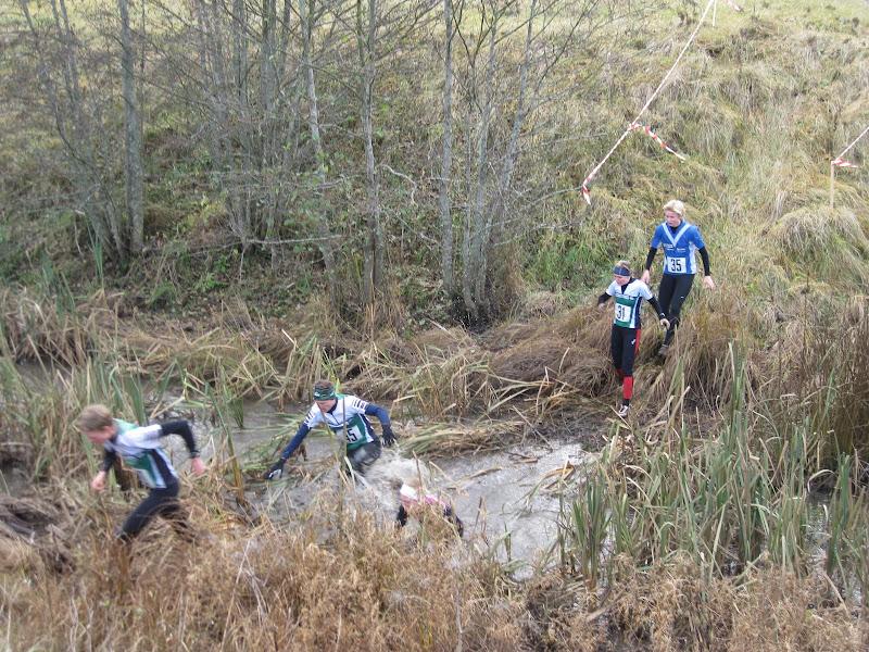 XC-race 2009 - IMG_2010.JPG
