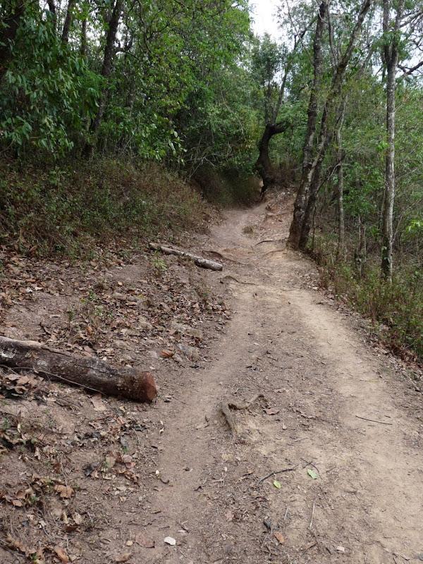 Chine: randonnée xishangbanna, région de Bada - Picture1%2B1042.jpg