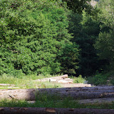Chemin de La Rodé, Cocurès, 620 m (Lozère), 6 août 2013. Photo : J.-M. Gayman