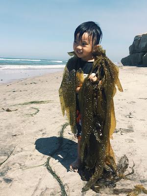 san diego beach, beach, san diego family