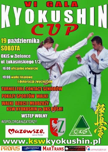 VI GALA KYOKUSHIN CUP