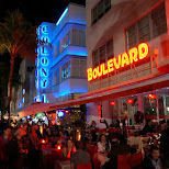 Ocean Drive's neon lights in all their glory in Miami, Florida, United States