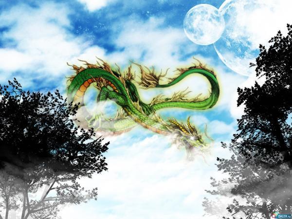 True Partner For You, Dragons 3