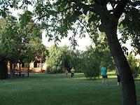 Felsőberecki Bodrog Kemping udvara_ gyönyörű helyszínt biztosított a zárórendezvényhez.jpg