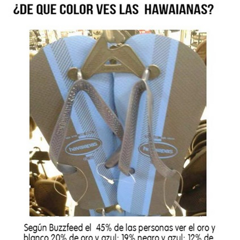 ¿De que color son estas zapatillas?  foto viral