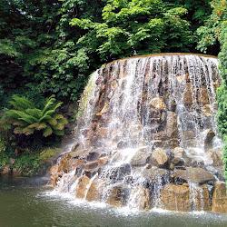 Iveagh Gardens's profile photo