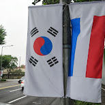 south korean and dutch flags in Seoul, Seoul Special City, South Korea