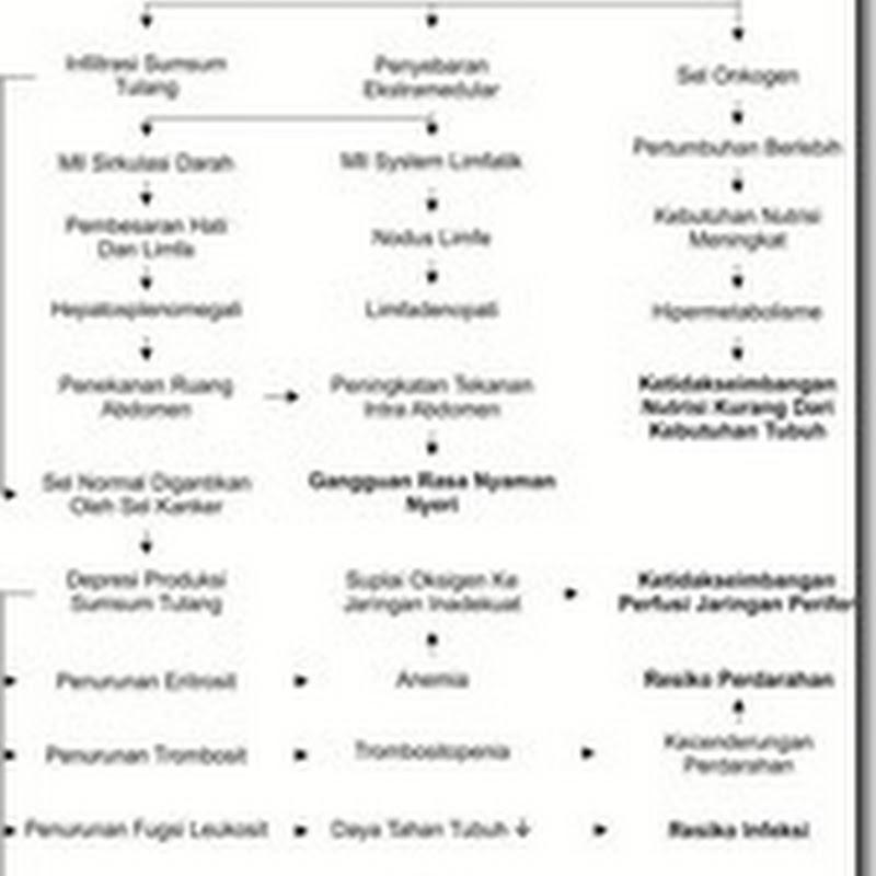 Promosi Kesahatan pada Kelompok Lansia (Metode Brainstorming)