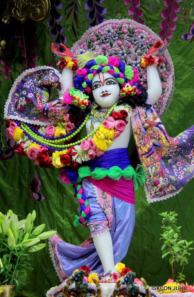 ISKCON Juhu Deity Darshan on 20th Oct 2016 (39)