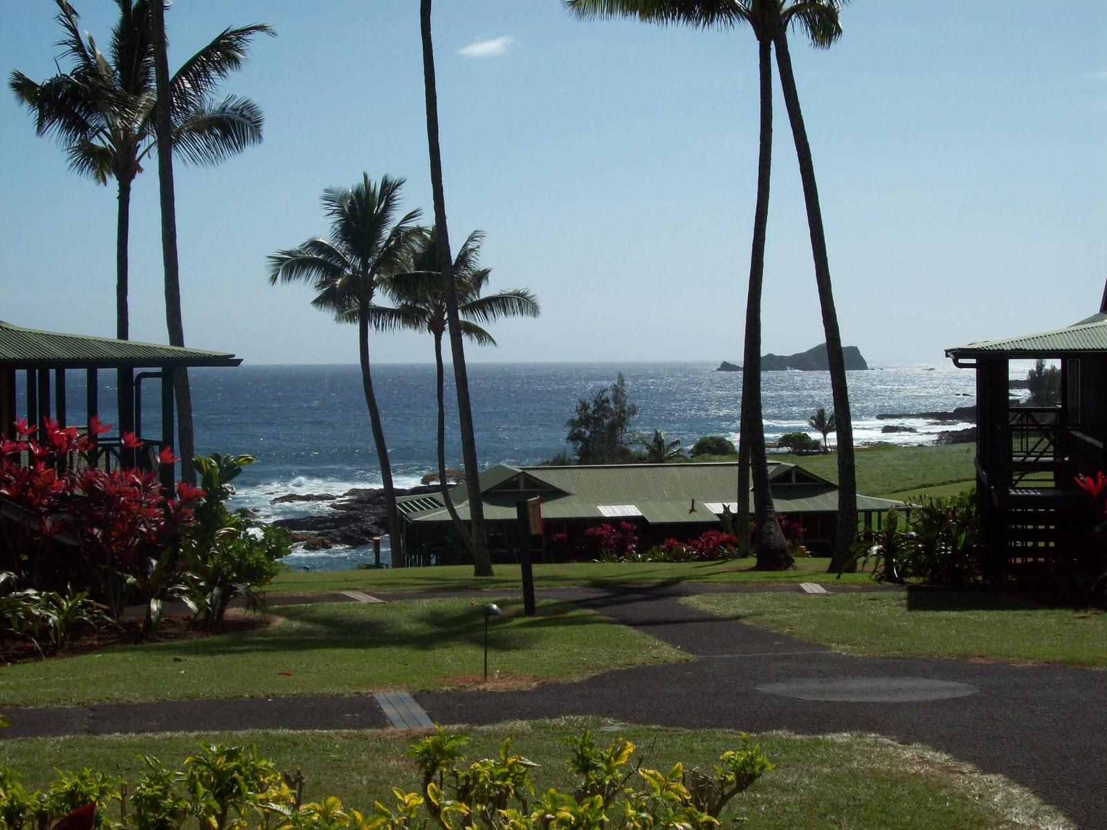Hawaii Day 5 - 114_1592.JPG