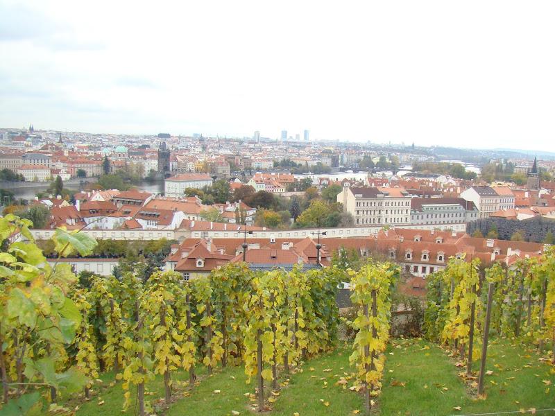 Praga desde la Colina de Petřín