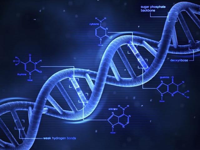 DNA का full form क्या होता हैं? DNA ka Full Form?