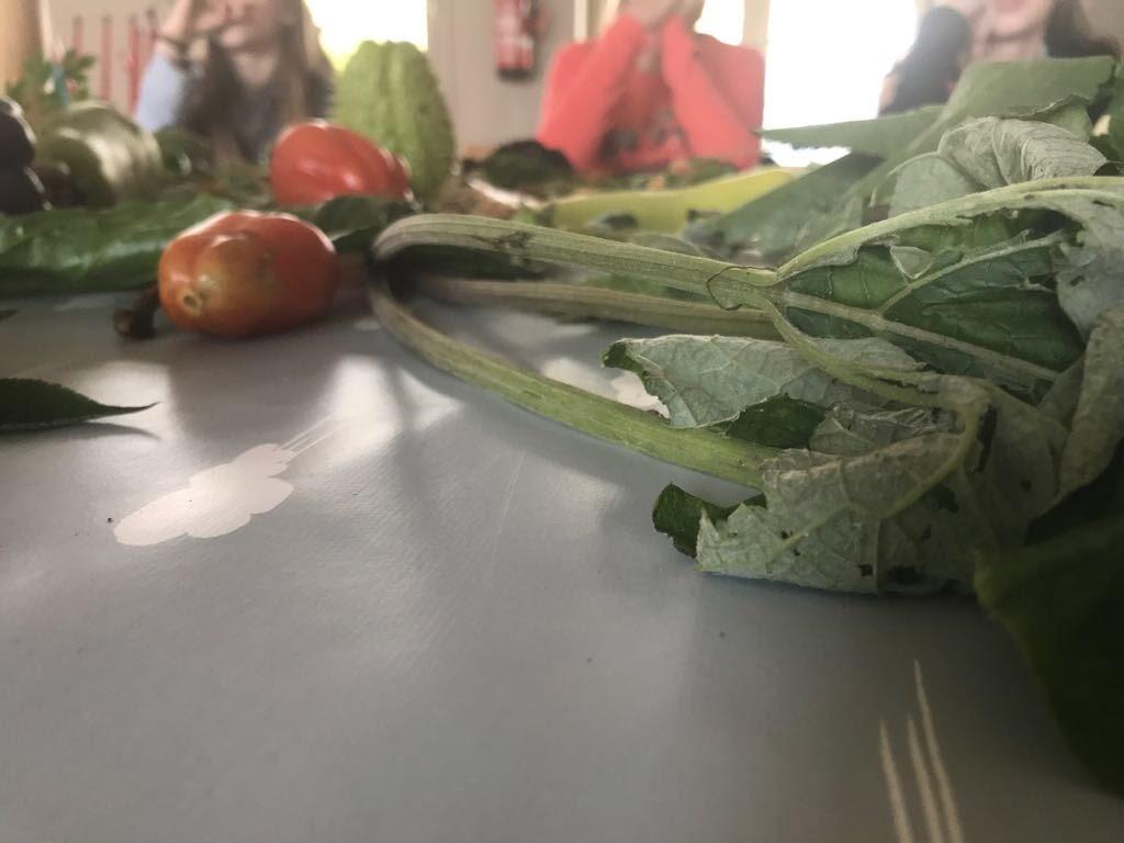 Vergeten groenten - IMG_8733.JPG