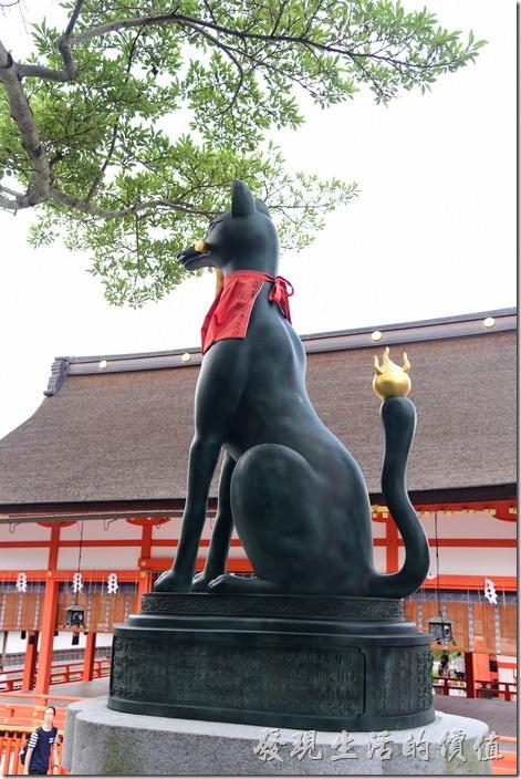 這隻狐狸跟其他的不太一樣,尾巴上有金黃色的火焰。