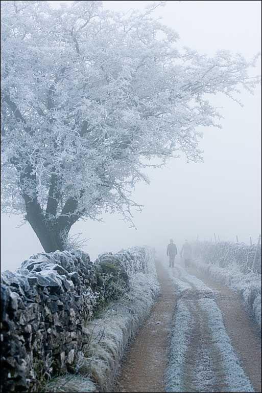 Gratton-Lane-Frost