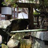 2014 Japan - Dag 8 - jordi-DSC_0598.JPG