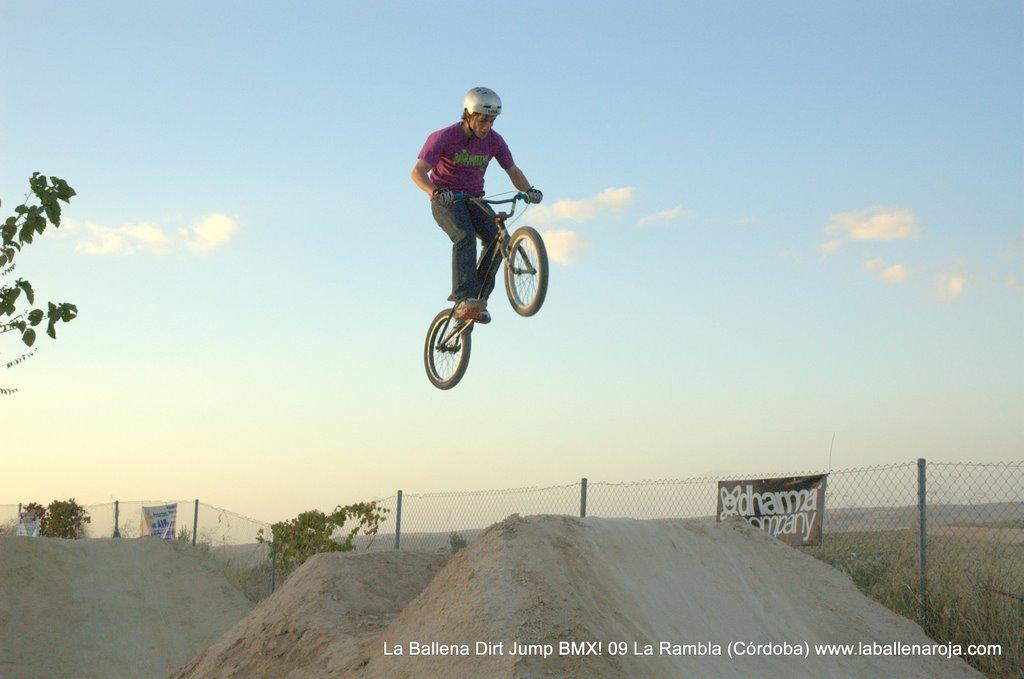 Ballena Dirt Jump BMX 2009 - BMX_09_0142.jpg