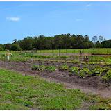 GardenMinistry2015