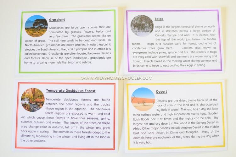 Animal Habitats Definition Cards