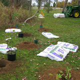 Hammo Planting - Shannon Schiesser - IMG_4893.JPG