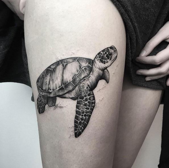 Este impressionante em preto e cinza tinta tartaruga