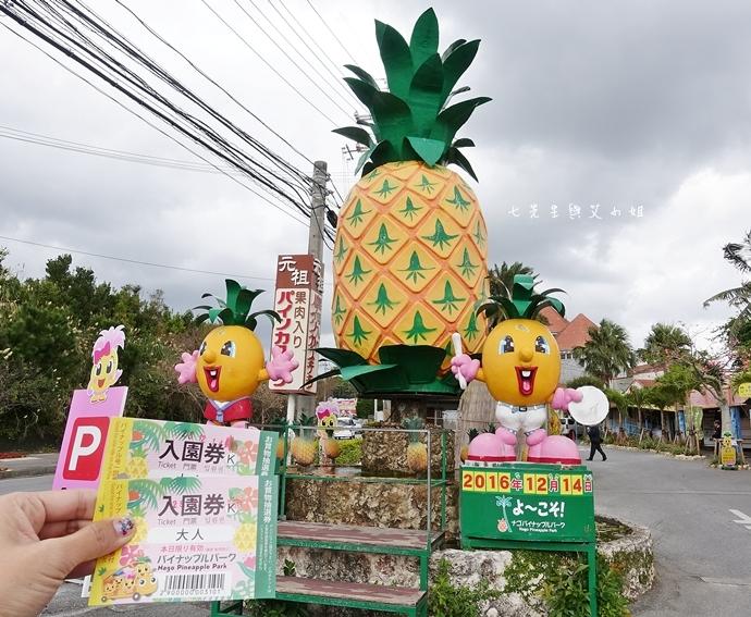 7 沖繩自由行 觀光巴士一日遊 推薦 美麗海家族服務號觀光巴士 Rado觀光巴士 美麗海水族館 琉宮城蝴蝶園 名護鳳梨園