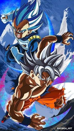 Dragon Ball Super Hindi Dubbed