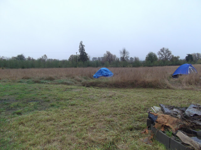 Dennis double tarped his tent because he woke up with a lake in it.  The trout splashing woke him up.