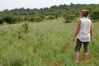 """Her er vi kommet på en lidt """"uautoriseret bush-walk"""". Vores guide fulgte os lige lidt ud på dette åbne område, hvor der var fuldt af dyr."""