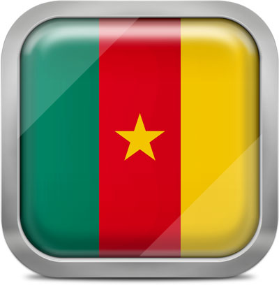 Cameroon square flag with metallic frame