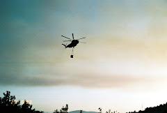 השריפה 1993.JPG